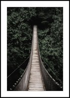 Forest bridge Poster
