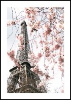 Blooming Eiffel Tower Poster