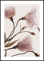 Pink Pastel Flowers No2 Poster