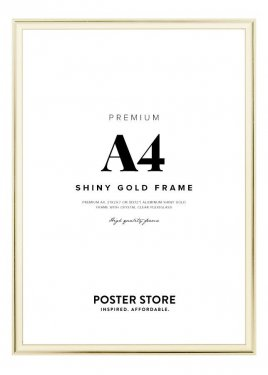 Picture frames online store